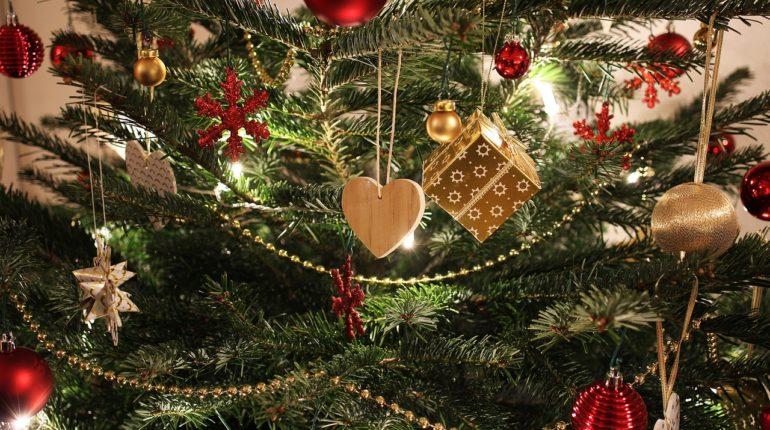 choinki bożonarodzeniowe